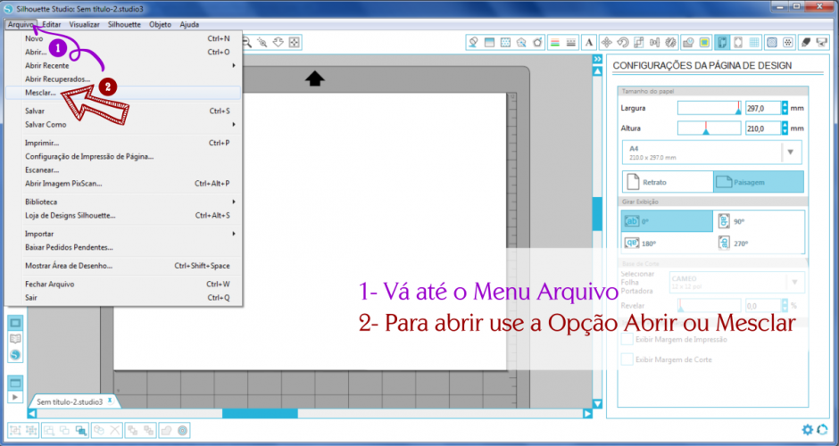 imagem_1
