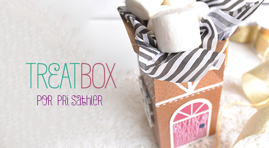 Treat Box Natal